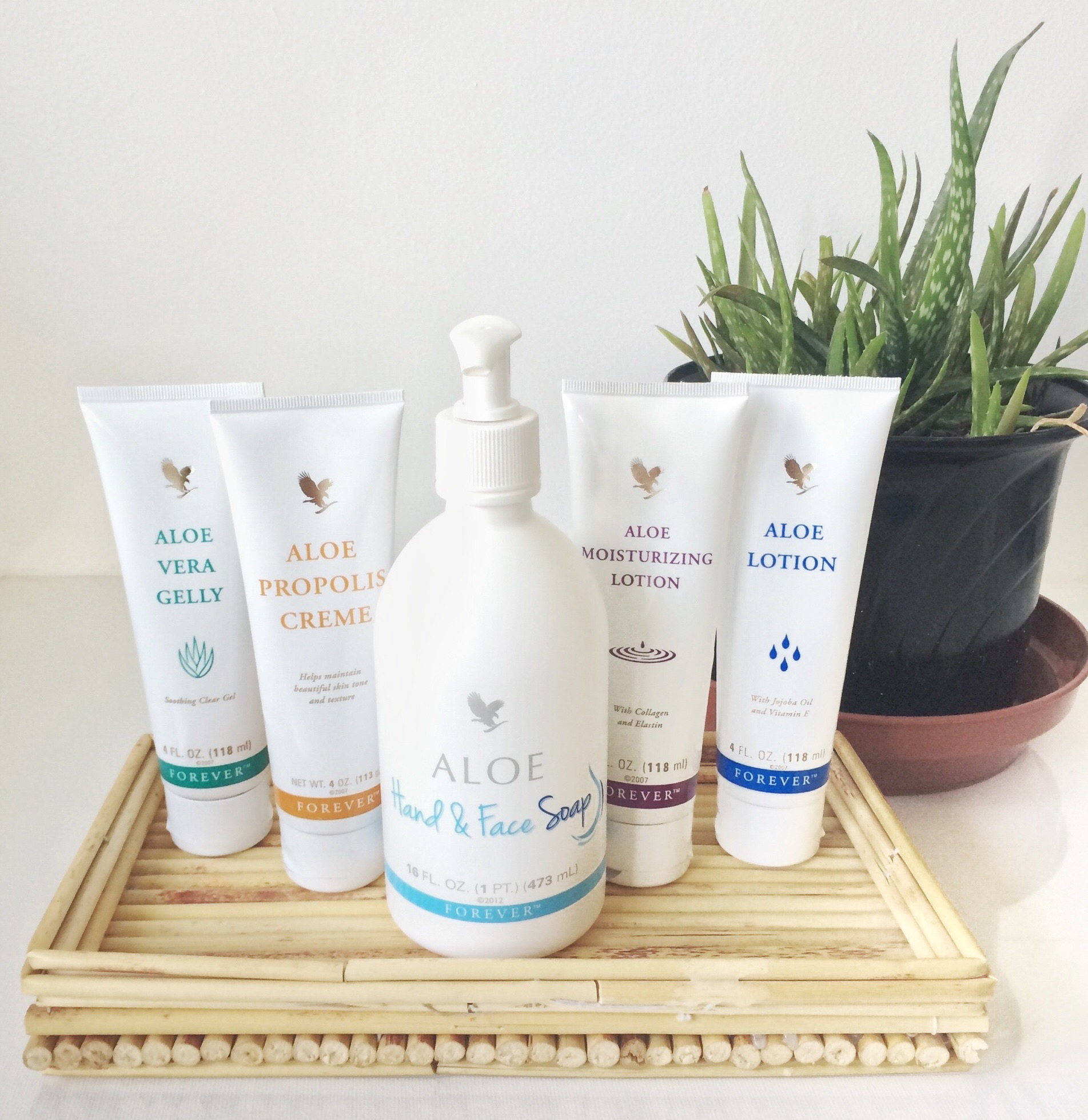 Inloggen FBO - Forever Living Products